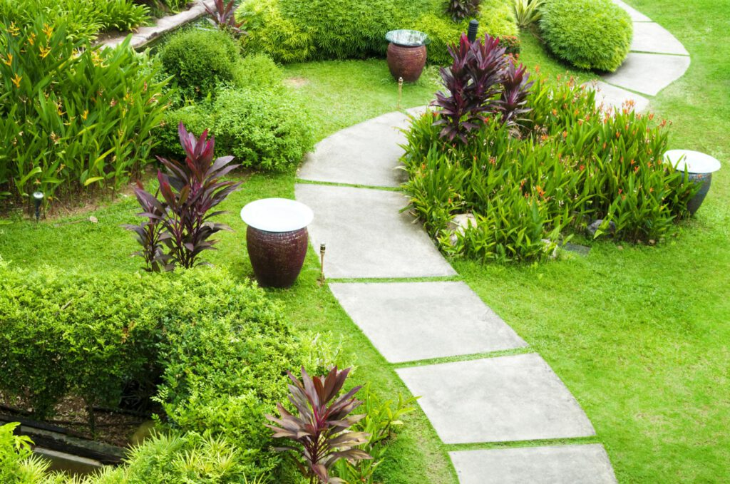 walkway with plants and grasses